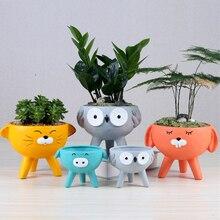 Ceramic Flowerpot Animal-Plant Kawaii Pots Suculentas-Pot Garden-Decor Rabbit Cartoon