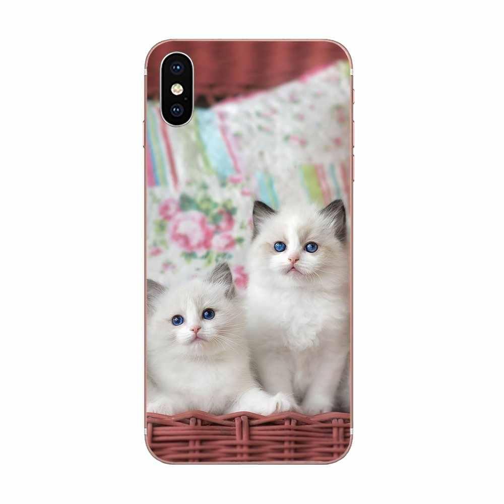 Téléphone Design TPU pour Xiaomi Redmi Note 2 3 3S 4 4A 4X5 5A 6 6A Pro Plus miaou belle couverture mignonne chat Kitty remarquable