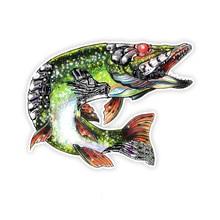 Dawasaru colorido peixe carro adesivo personalizado protetor solar decalque portátil motocicleta acessórios de automóvel decoração pvc, 24cm * 11cm