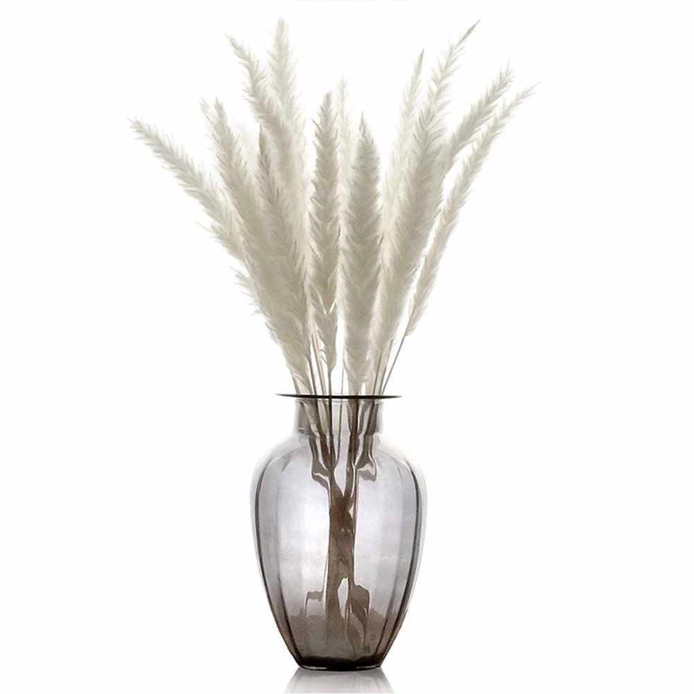Hot 15 Pcs Dried Small Pampas Grass Phragmites Communis Decoration for Home Store Wedding D6