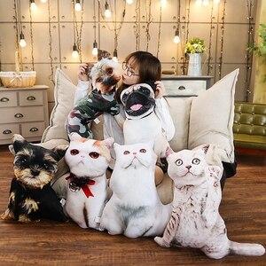 Image 2 - Simulation Funny Dog&Cat Plush Pillow Soft Cartoon Animal Pug&Persian Cat Stuffed Doll Nap Pillow Cushion Baby Kid Birthday Gift