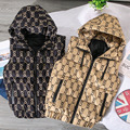 Autumn/Winter Men's Sleeveless Jacket Hooded Warm Vest 3D Trend Fashion Casual Horse Tide Brand Armor Casual Vest Hooded Vest