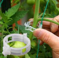 50/100 шт 30 мм Пластик завод Поддержка зажимы для томатного типы растений висит лоза Парниковый Сад овощи Сад орнамент