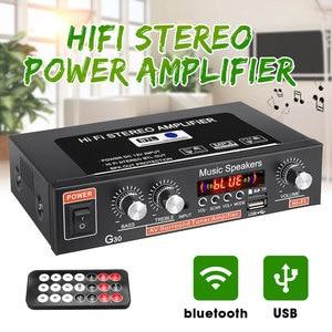 12V 220V 2-channel HiFi Stereo