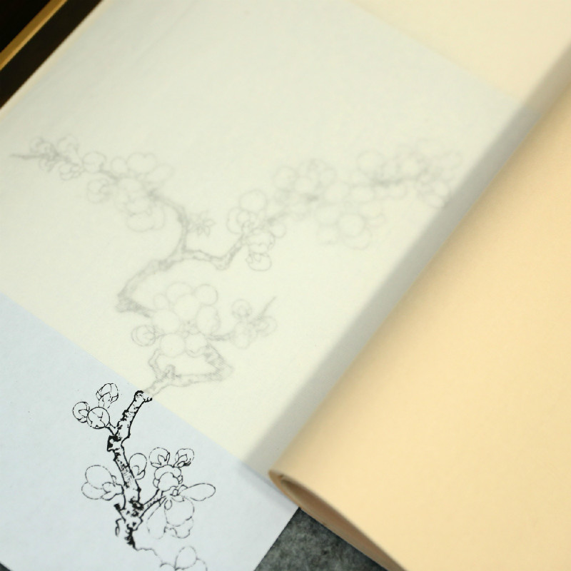 20sheet Calligraphy Copy Paper Chinese Ripe Xuan Paper Papel Arroz Ultra-thin Chinese Painting Tracing Rice Paper Rijstpapier