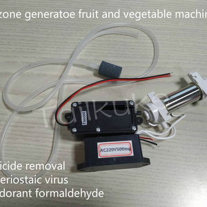 500mg/h ozone generator, fruit