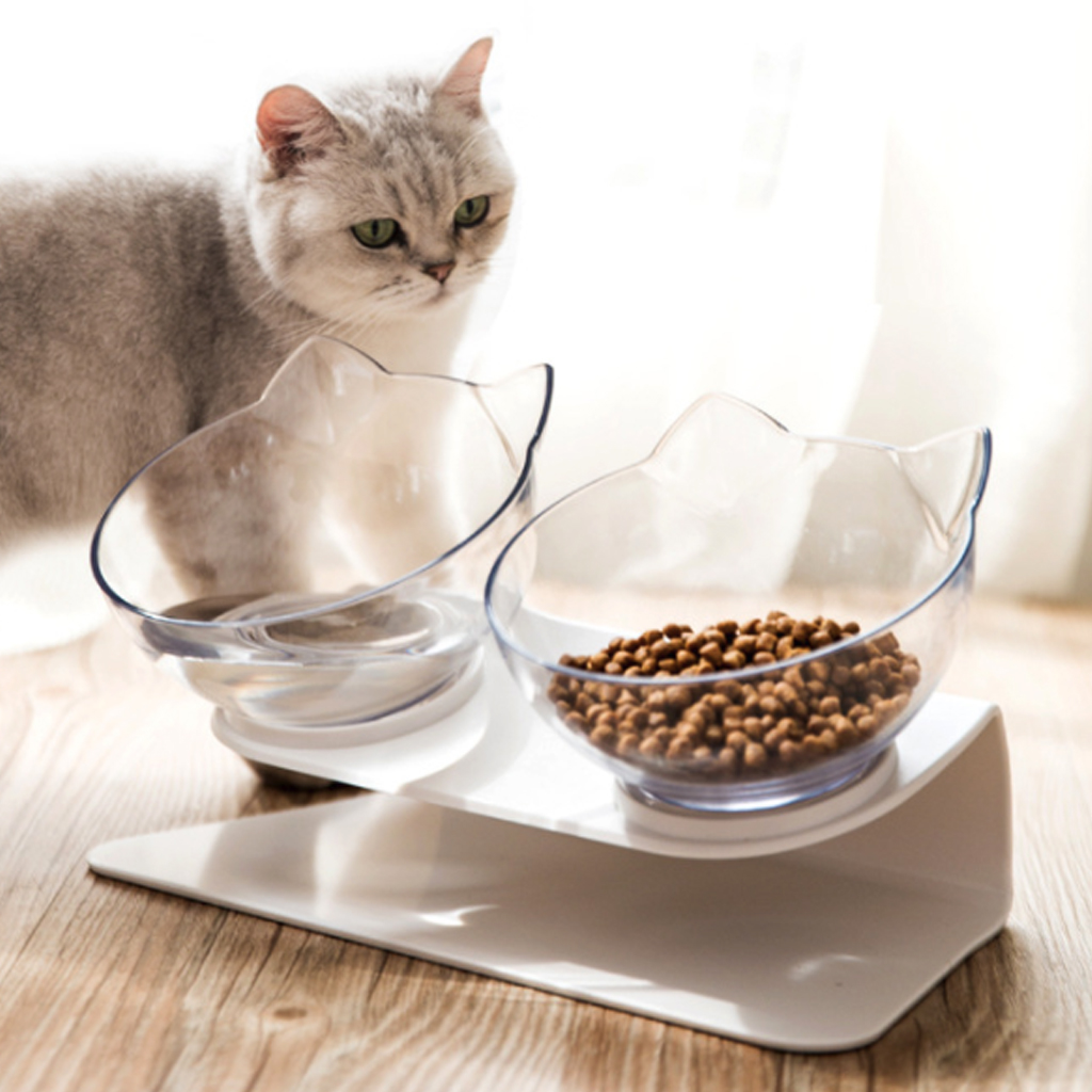 Pet Dog Cat Transparent Bowl with Holder Anti-slip Cat Food Dish Pet Feeder Water Bowl Perfect For Cats And Small Dogs Supplies