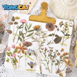 40pcs/pack 20 Designs Cute Flower Stickers Bullet Journal Transparent PET Sticker Plant Decoration Korean Stickers Stationery