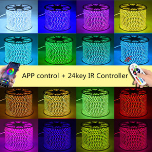 Image 2 - 220V LED Strip Light 12V RGB SMD 5050 Tape Phone APP and Remote control Waterproof flexible lights Outdoor room decoration lamp
