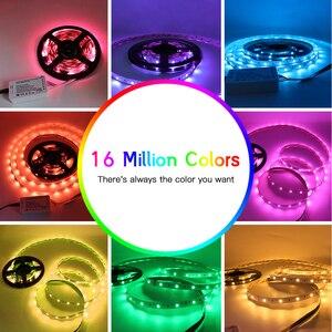 Image 3 - GLEDOPTO RGB + CCT לבן LED רצועת אור rgb ww/cw DC24V 5m ip65 עמיד למים ip20 לא עמיד למים rgb אור SMD 5050 SMD 2835