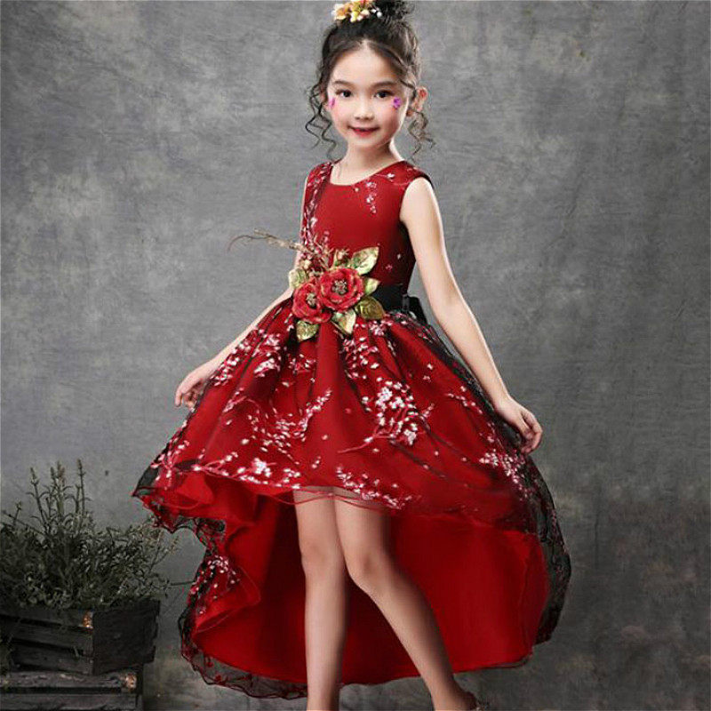 Baby Girls Flower Princess Ball Gown Party Tutu Trailing Dress For Brithday Wedding Kids Christmas Dresses Children Clothing 5