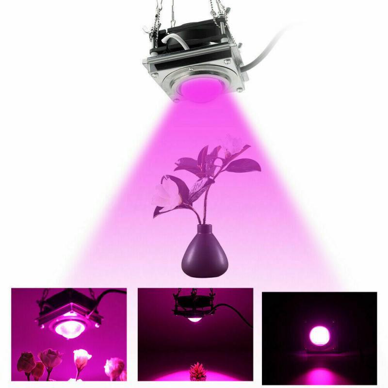 Full Spectrum Plant Growth Light COB 50W Greenhouse Flower Seedling 110V/220V LED Hanging Photosynthesis Lights Garden Supplies