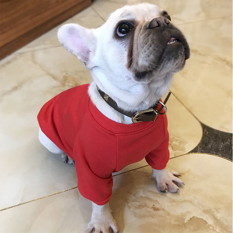 Cat Pattern Cotton Pet Dog Clothes For Small Dogs Chihuahua Tshirt Pets Clothing French Bulldog Soft Breathable Sweater PC0022