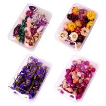 1 caixa de cristal epóxi enchimento seco flor mista unhas adesivos decorações resina material enchimento artesanato arte acessórios
