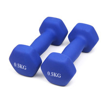 0.5Kg Dumbbells Set Dumbbells Rack Holder Fitness Thuis Gym Oefening Training Halters Vrouwen Mannen Kid Workout Gewichtheffen Gym(China)
