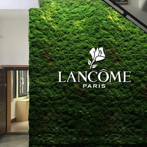 Image 4 - Hohe qualität Simulation grüne pflanze unsterblich gefälschte blume Moos gras hause wohnzimmer dekorative wand DIY blume mini zubehör