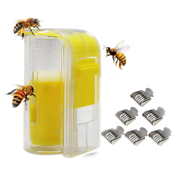 1pcs queen isolation and introduction cage plastic round flat queen introducing cage 1 Pc Bee Queen Marker Bottle Breathable Plastic Anti-Escape Apiary Mark Cage And 6 Pcs Bee Clips Stainless Steel Queen Catcher