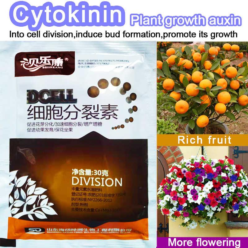 Гормоны для растений цитокинина улучшают растительное цветочное фруктовое дерево лучше вырастают затягивающиеся листья senescence удобрение для бонсай домашний сад