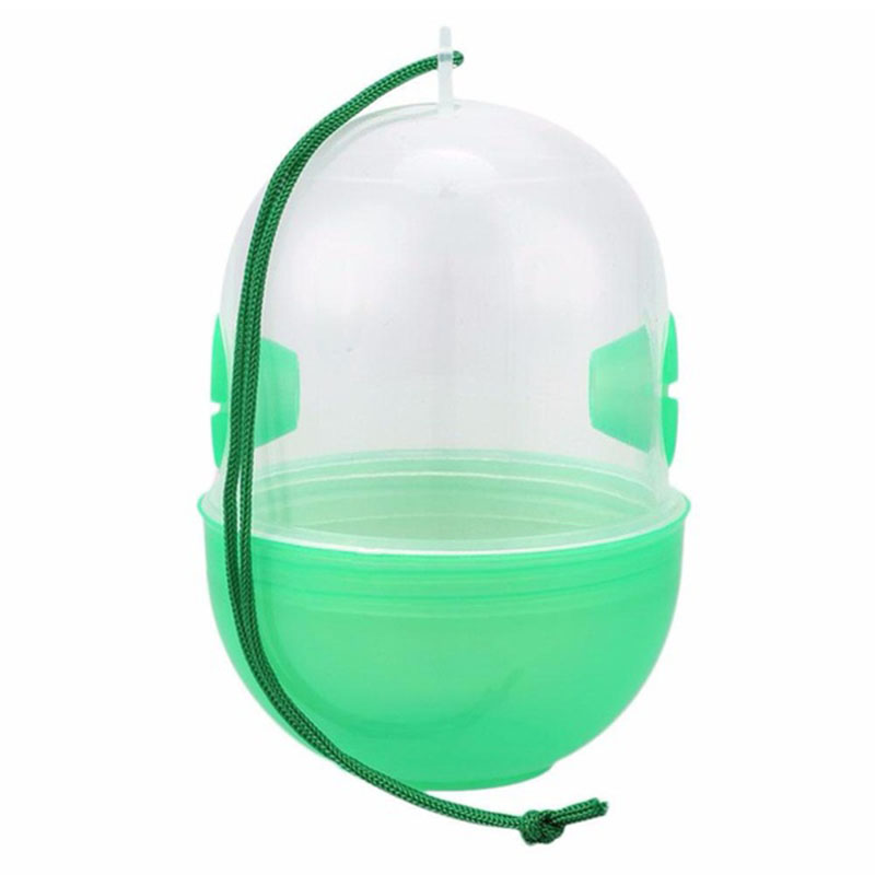 Harmless Fly Trap Wasp Catcher