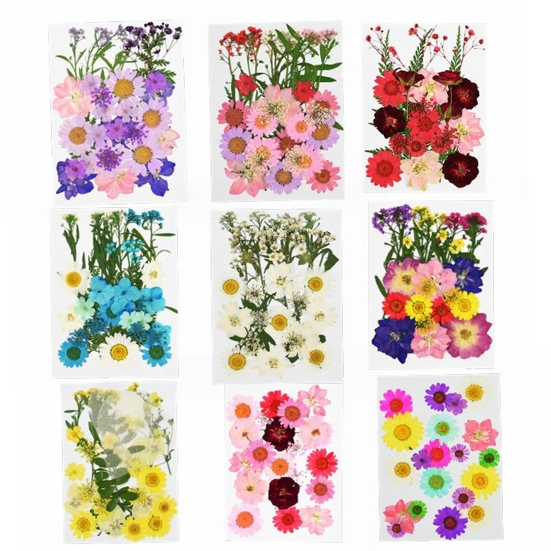 Miniflores secas prensadas para manualidades, vela para álbum de recortes, decoración de fiesta de cumpleaños, flores secas