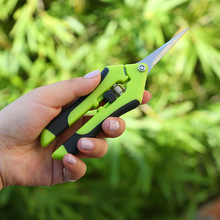 Garden Pruning Shears Stainless Steel Fruit Picking Scissors Household Potted Trim Weed Branches Small Scissors Gardening Tools недорого