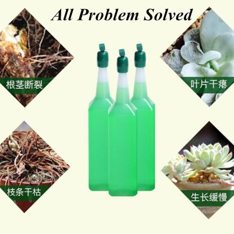 1 Bottle Organic Castings Concentrate Fertilizer Olive Bonsai Tree Hydroponic Nutrient Solution Universal Potted Plant image