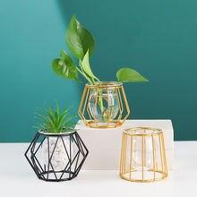 Ретро простая прозрачная стеклянная гидропонная ваза геометрический