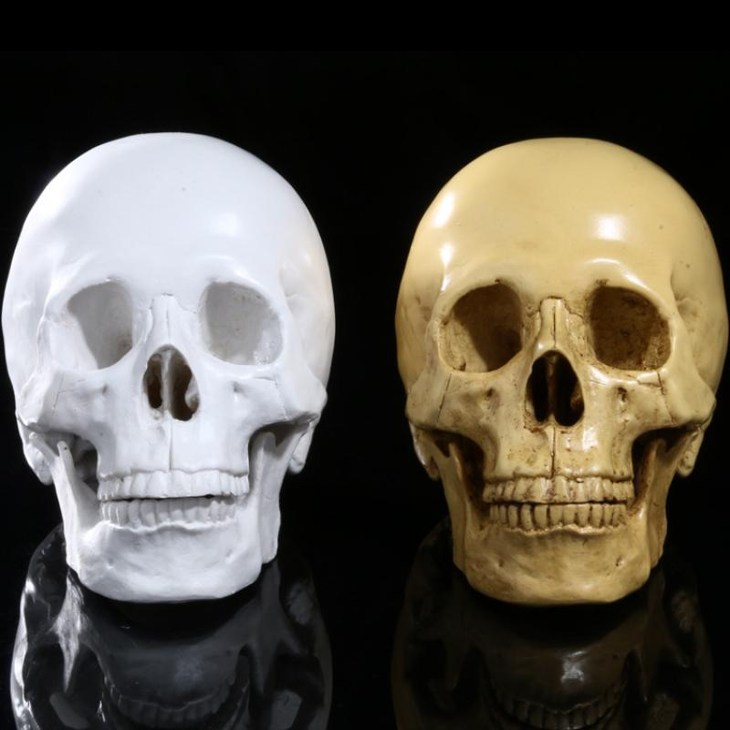 Resin Skull Decoration DIY Artificial Skull Halloween Decor Bone Head Craft Hanging Home Decorations Festival Party Supplies