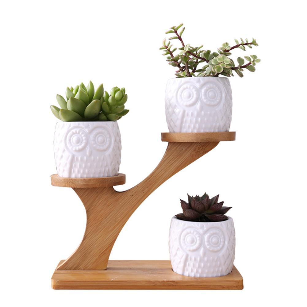 Creative Succulent Plant Flower Pot Holder Ceramic Owl Pattern Pot Treetop Shaped Bamboo Shelf Pot Planter Set For Home Office