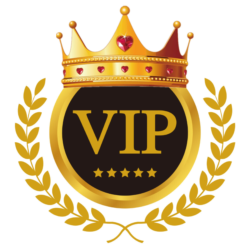Salange VIP Link for BIG Dropshipper ( Wholesale Drop Shipping )