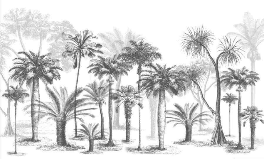 カスタム 3d 壁画壁紙黒と白のスケッチスタイル熱帯雨林ココナッツツリー北欧テレビの背景の壁
