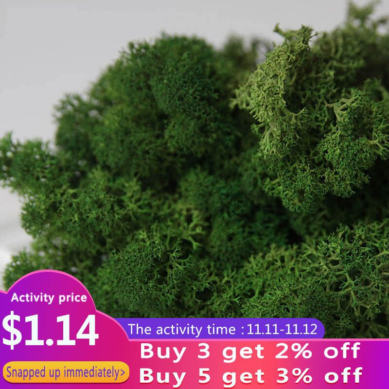 Artificial Plant Eternal Life Moss DIY Flower Material For Mini Garden Micro Landscape Home Wall Decor 10g/pack 14colors Choice