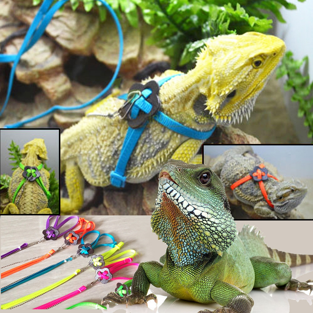 Cable Leash Reptile Supplies Lizard Parrot Adjustable Harness Bearded Dragon