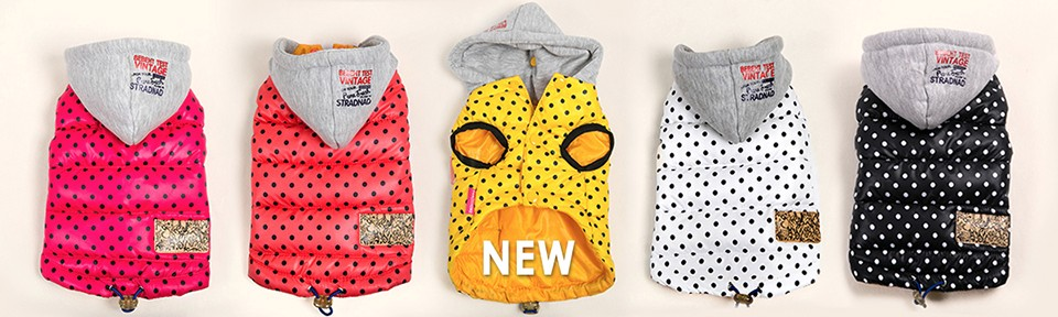 Pet Dog Clothes Winter Autumn Coat Jacket For Small Dogs Chihuahua French Bulldog Clothes (7)