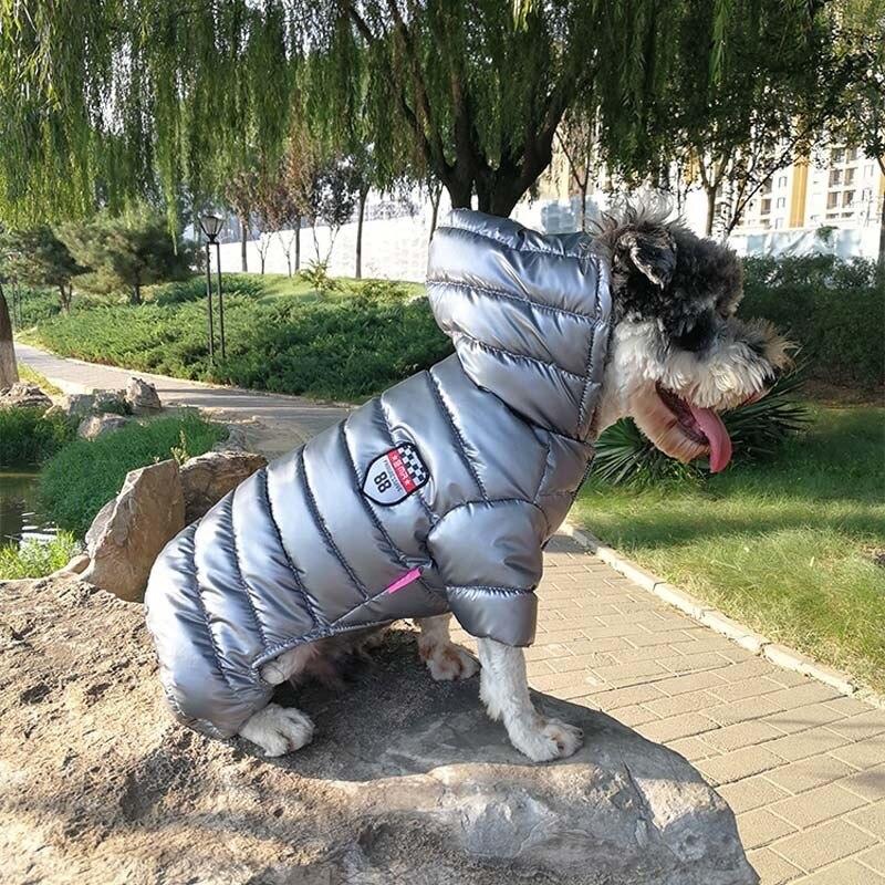Dog jumpsuit clothes  (5)