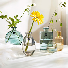 Small Vase Dried Flowers Home-Decoration Household-Table Colour Ins-Glass Nordic Modern