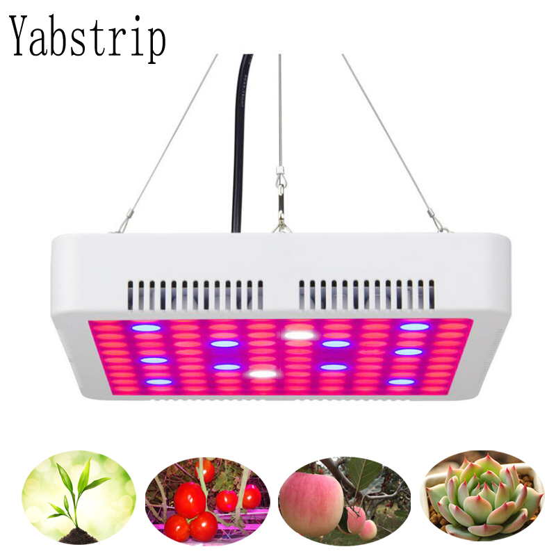 Double Switch LED grow Light 300W Phyto Lamps Full Spectrum For indoor seedling tent Greenhouse flower fitolamp plant Phyto lamp