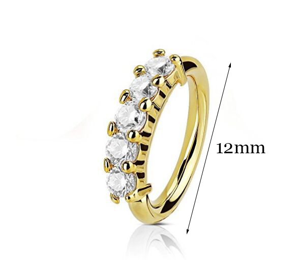 1 Pcs Piercing Nose Ring Expander Seamless Segment Ear Nose Hoops Gold Color Cz Tragus Cartilage.jpg 640x640 - 1 Pcs Piercing Nose Ring Expander Seamless Segment Ear Nose Hoops Gold Color Cz Tragus Cartilage Earrings Nostril Body Jewelry
