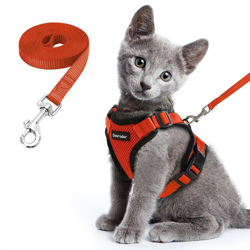 고양이 하네스 및 가죽 끈 반사 스트립과 함께 작은 개 하네스를 걷기위한 설정 강아지 새끼 고양이 목걸이에 대한 나일론 메쉬 애완 동물 옷