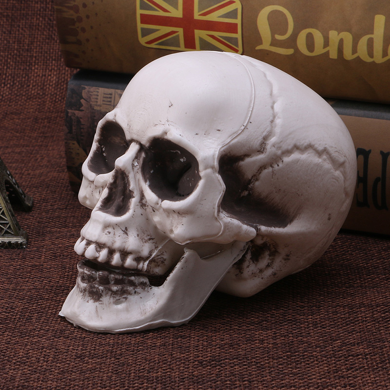 Plastic Human Mini Skull Decor Prop Skeleton Head Halloween Coffee Bars Ornament LX9A