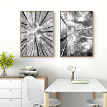 Nordic Canvas Painting Poster and Print for Living Room Bedroom Black and White Forest Picture Wall Art Decoration Home Decor modern black swan and white swan canvas painting print poster picture home bedroom wall art painting decoration can be customize