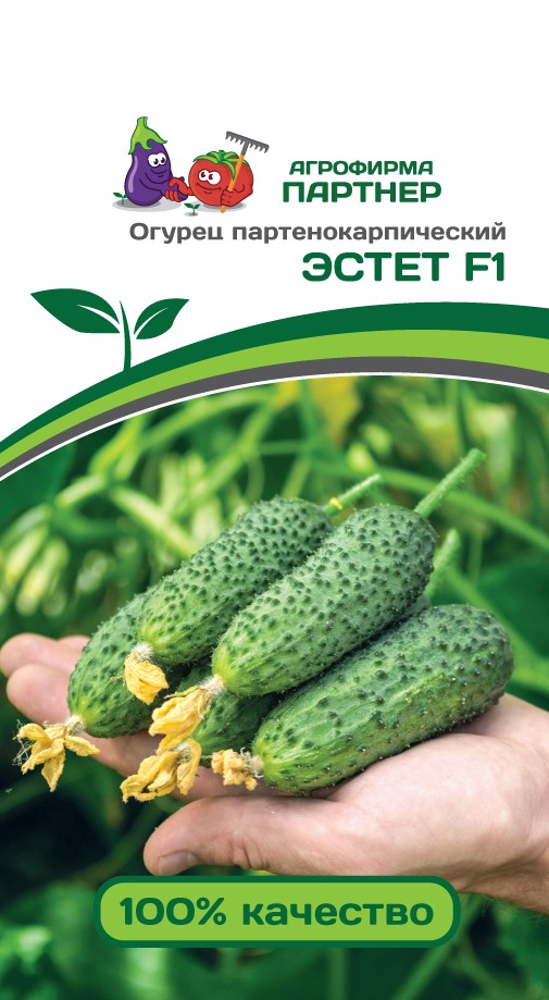 Эстет F1 Огурец партенокарпический ПАРТНЕР 5шт Семена|Разбрасыватели семян| | АлиЭкспресс
