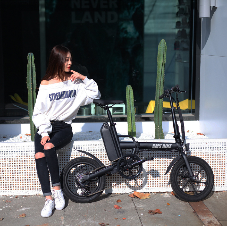 CE approved folding ebike 16 inch pedal assisted electric fold bike with 36V 13AH lithium battery 6