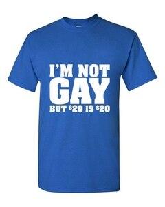 2015 летняя стильная новая мужская модная забавная футболка с надписью «I'm Not Gay, но 20 Bucks is 20 Bucks», летняя Хлопковая мужская футболка с короткими рукавами