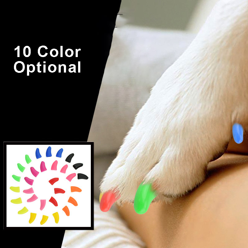 20Pcs Dogs Puppy Kitten Paws Grooming Nail Claw Cap 1pc Adhesive Glue Soft Rubber Pet Teddy Cat Nail Cover Paws Caps Pet Supplie in Cat Grooming from Home Garden