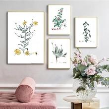 Pósteres e impresiones de acuarela de estudios de hierbas botánicas, lienzo de planta francesa antigua, pintura de pared, imágenes artísticas, cocina, dormitorio, Dec