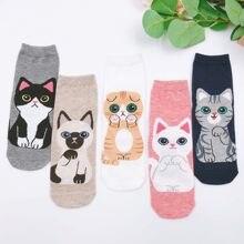 Носки женские высокие хлопковые в японском и корейском стиле, милые Мультяшные модные смешные, с кошкой, ins, 5 пар/упаковка, на весну