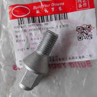 Tire screw for BYD F0