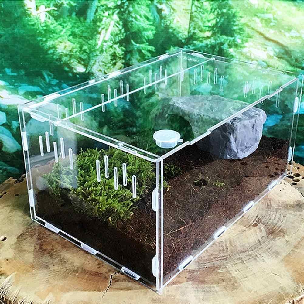 Reptil Tangki Serangga Laba-laba Kura-kura Kadal Kecil PET Pembiakan Kotak Transparan Acrylic Vivarium Tutup Hewan Peliharaan Reptil Produk Terarium
