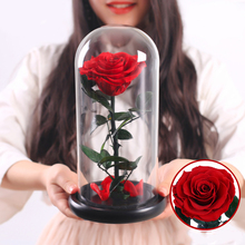 Eternal Rose Beauty And The Beast Galaxy Dry Flower Teak On Head Glass Dome Wooden Base for Wedding Decor Mothers Day Gift